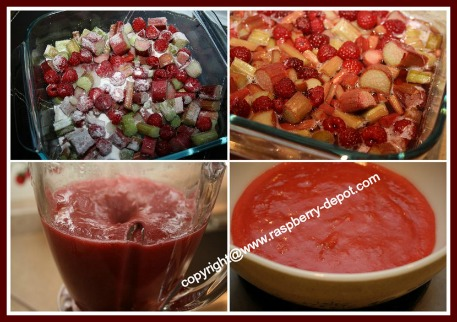 Making Raspberry Ice Cream