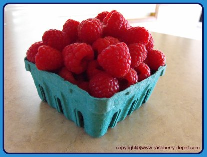 How to Freeze Fresh Raspberries Whole