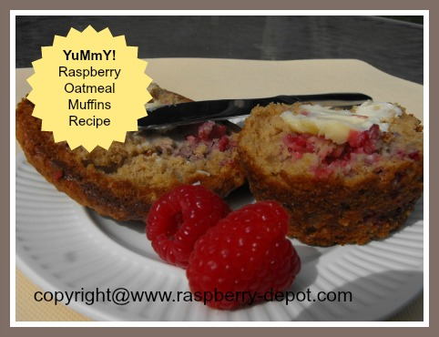 Healthy Raspberry Muffins made with fresh or frozen raspberries and oatmeal