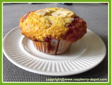 Yummy Raspberry Muffins made with Cornmeal