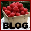 Raspberry Depot Recipes Blog Logo