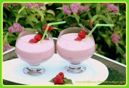 Low Fat Smoothie with Raspberries, Kiwi, Banana, Strawberries and Yogurt