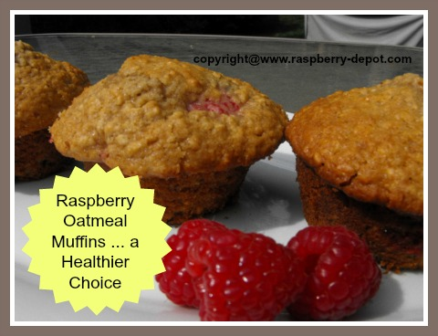 Homemade Raspberry Oatmeal Muffins - a Healthier Raspberry Muffin Recipe