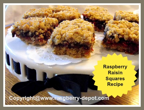 Homemade Raspberry Raisin Squares Recipe