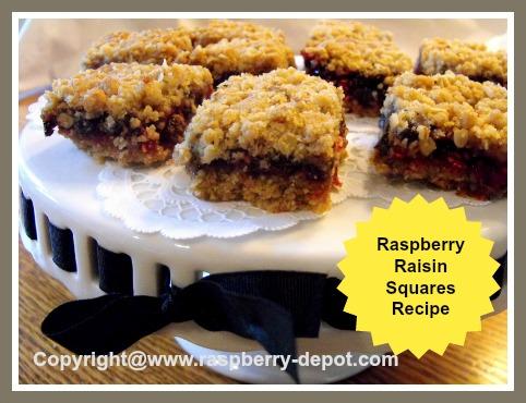Homemade Raspberry Raisin Squares Recipe