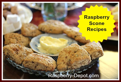 Homemade Raspberry Scone Recipes