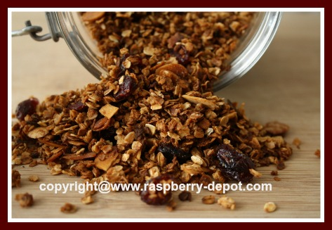 Recipe for Granola with Dried Fruit