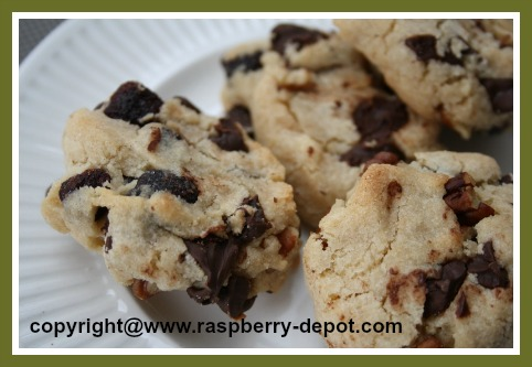 Recipe Using Dried Raspberries Raspberry Chocolate Chip Cookies