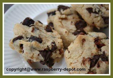 Recipe Using Dried Raspberries Raspberry Chocolate Chip Cookies