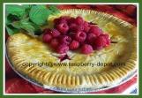 Best Basic Raspberry Pie