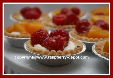 Cream Cheese Tarts with Fruit