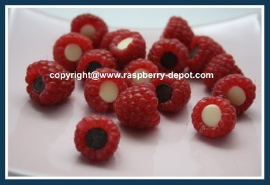 Chocolate Raspberries Fruit Tray Decoration