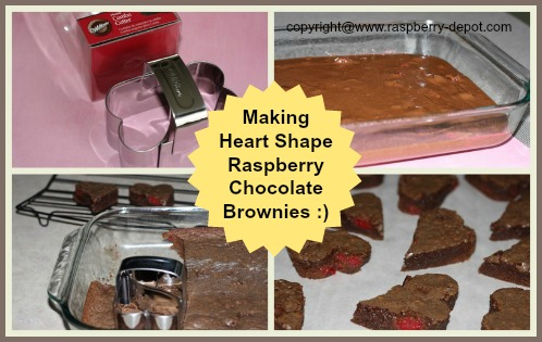 Making Heart Shaped Brownies for Valentine's Day