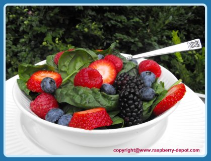 Healthy BERRY and Spinach Salad! Four berries and healthy green salad!