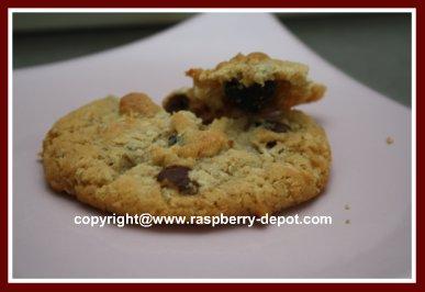 Healthy Oatmeal Chocolate Chip Raspberry Cookies Homemade with Dried Raspberries
