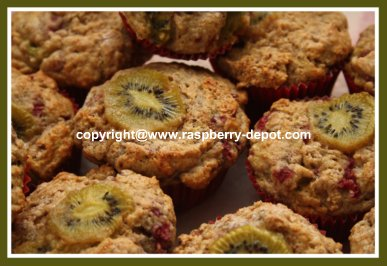 KIWI Muffins Recipe Homemade Delicious and Less Sugar Muffins