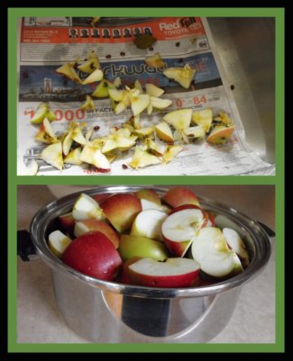 Making Applesauce /Cutting Up the Apples