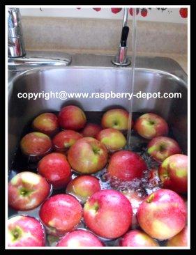 Washing the Apples to Make Homemade Applesauce