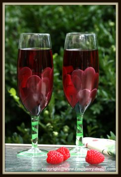 Homemade Raspberry Wine Recipe