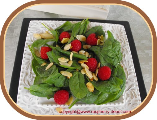 Green Salad with Raspberries Spinach Raspberry Salad