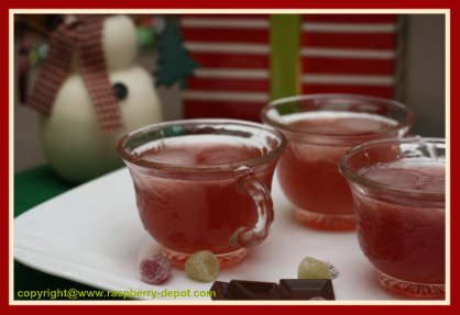 Raspberry Punch with Raspberry Cranberry Juice and Pineapple Juice for Christmas Punch drink