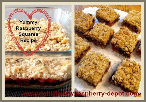 Yummy Recipe for Baked Raspberry Jam Bars baked in a 8