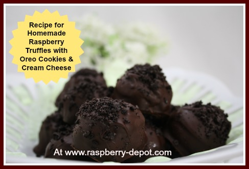 Homemade Chocolate Raspberry Truffles Recipe