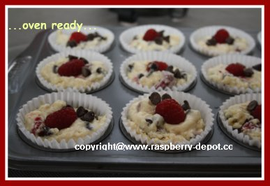 Making Chocolate Chip Muffins with Berries