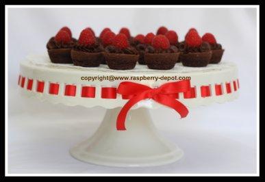 Simple to Make Raspberry Brownies