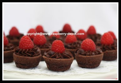 Iced and Decorated Brownie Bits