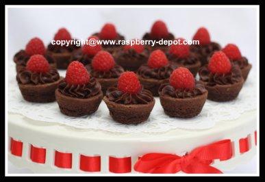 Easiest Iced Brownies /Tarts with Fresh Raspberries Recipe