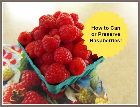 Canning Raspberries How to Preserve Raspberries Recipe