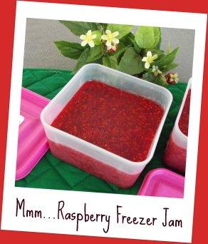 My Favourite Freezer Raspberry Jam Recipe