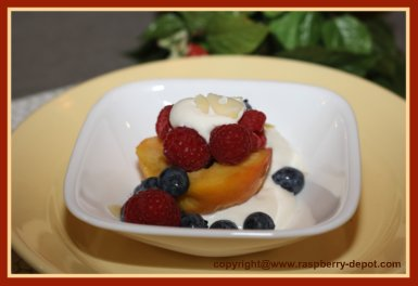Yogurt with Fresh Fruit - raspberries, blueberries and peaches! CAN make with ANY fruit!