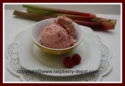 Raspberry Ice Cream Recipe to Make