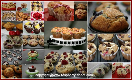 Raspberry Muffin Recipes for Red, Black, Purple, Yellow Raspberries