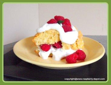 Best Raspberry Shortcake