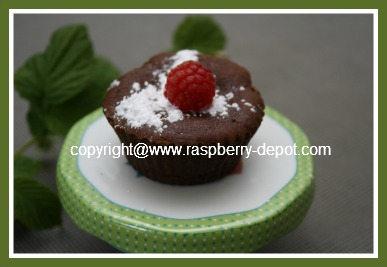 Recipe for Gluten Free Chocolate Cupcakes