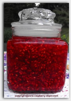 Recipe for Sugarless Raspberry Jam